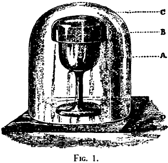 Illustration of Lister's arrangement of glass covers for his sterilized-milk-filled glasses.