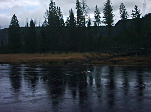 sampling water from the Madison river